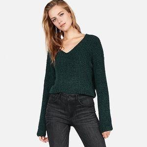 Express Cozy Chenille Emerald V-Neck Sweater